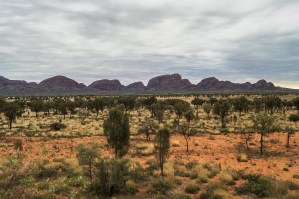 Discovering Kata Tjuta and Scaling the Olgas