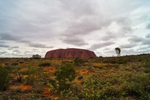 My Sunrise Trek around Uluru