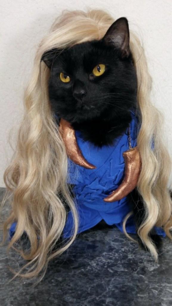 cat-cosplay-blog-3