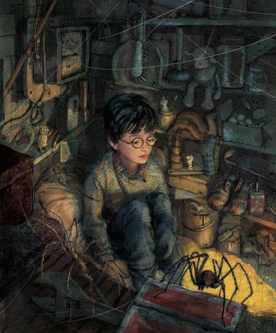 Harry Potter e a Pedra Filosofal ilustrado por Jim Kay - Fotos por madlyluv.com