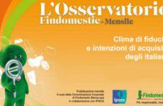 findomestic-osservatorio-mensile