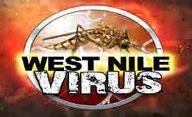 Mississippi Reports First Human Case of West Nile