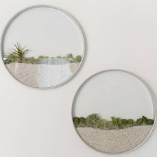 kim-fisher-round-terrarium-3.jpg.662x0_q70_crop-scale