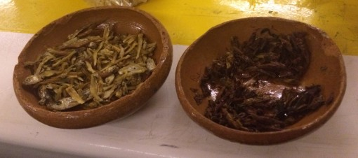 Dried fish and fried crickets in Mexico