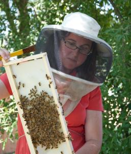 Dr. Deborah Delaney Assistant Professor Entomology & Wildlife Ecology University of Delaware
