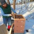 Feeding Bees in Winter