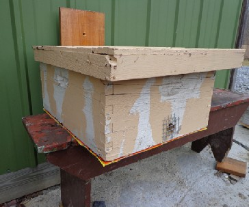 Front  view of a hivebody-style bait hive for catching swarms; the vertical board is for nailing and/or tying to a tree trunk or other structure. The hardware cloth on the front entrance is there to prevent mice from moving in. PHOTO: ANNE FREY