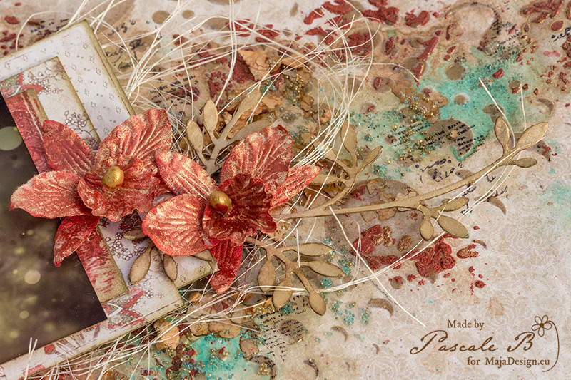 Orchid Beauty by Pascale B.