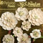 Mixed Blossoms x 8 - Antique Beige