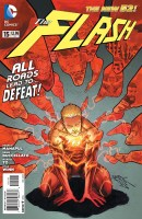 FLASH 15 cover