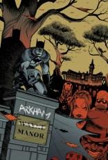 Batman, Arkham Asylum, Arkham Manor, Gotham Academy, Dark Knight, Gregg Hurwitz,
