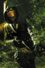 ARROW_Season2.5_2