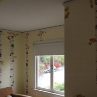 Birch/Aspen Forest Wall Mural for Kids&nbsp;Room