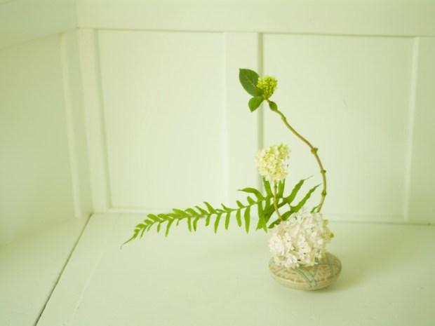 Ikebana 101