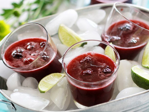 Blackberry Lime Spritzer