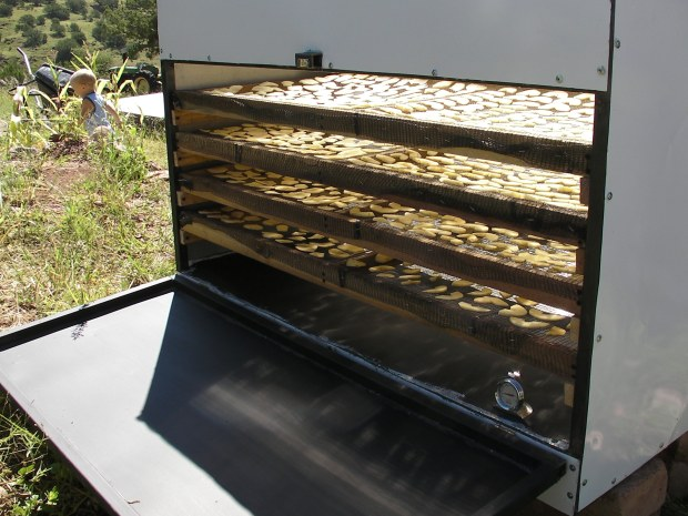 Solar Food Dryer