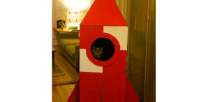 Cardboard Cat&nbsp;Rocket