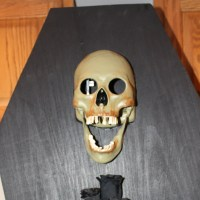 Haunted Coffin Card&nbsp;Holder