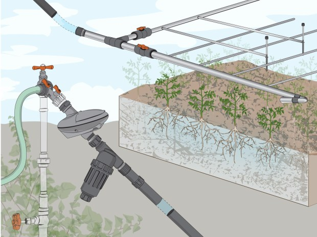 Drip&nbsp;Irrigation