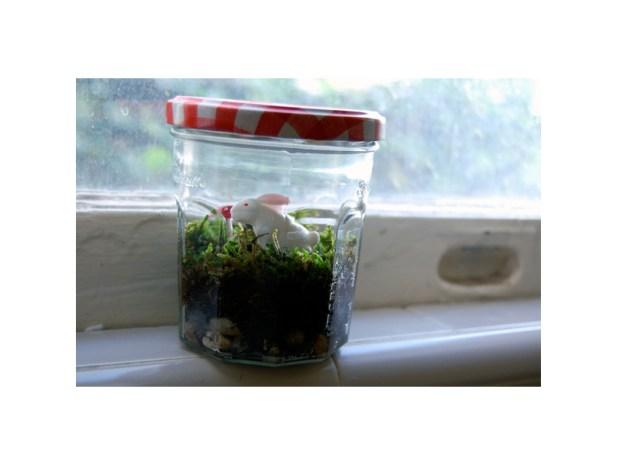 Mason Jar Terrarium