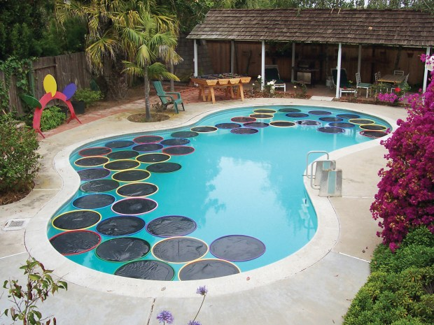 Lily Pad Pool Warmers