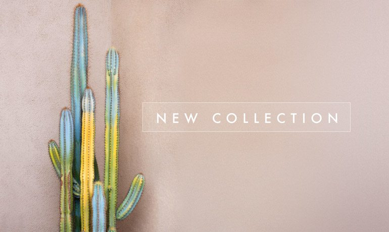 home-febrero-new-collection-low