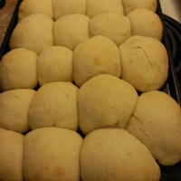 Sourdough Parker House Rolls