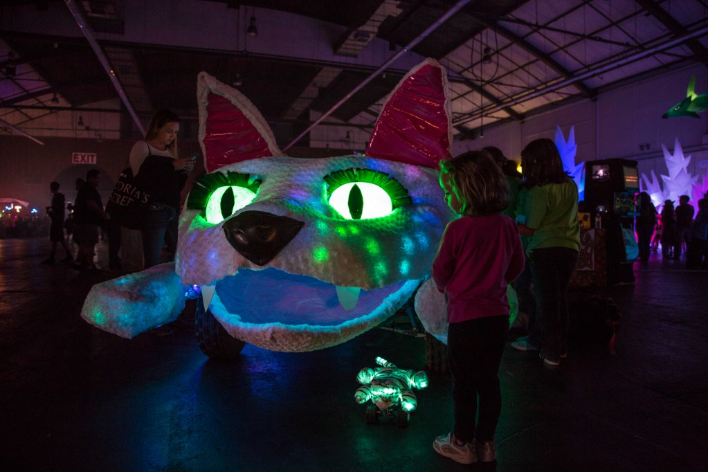 It's a cat of a different color in Fiesta Hall.
