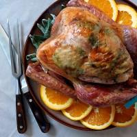 Image (2) thanksgiving_roastedturkey.jpg for post 225937