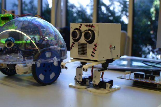 A Frankenbot? By Philip Steffan.