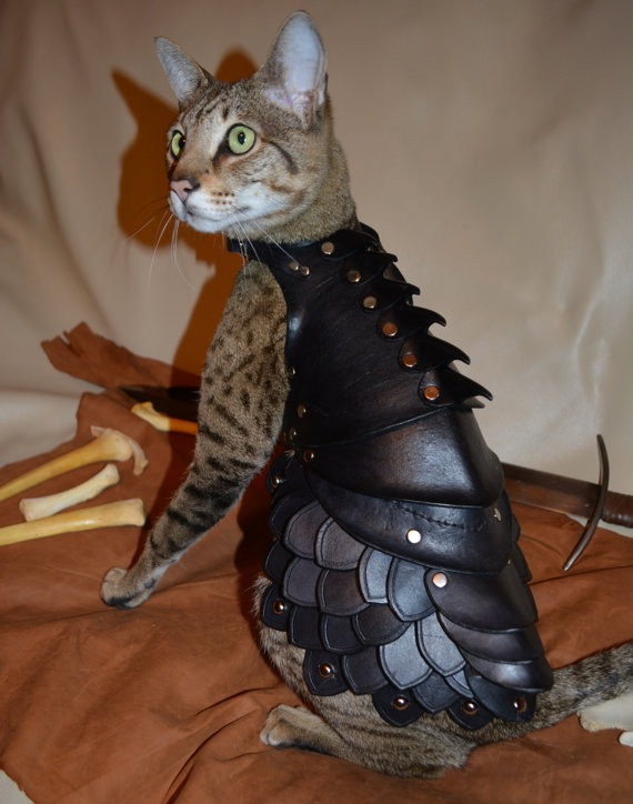 cat-battle-armor-1