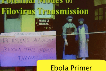 Makers Against Ebola - The Virus