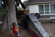 Cardboard X-Wing Crashes in Suburban Front Yard