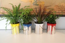 Paint Dipped Planters