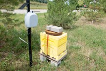 Beehive connected to internet.