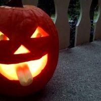 pumpkinbb1
