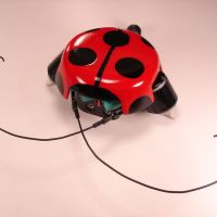 beetleBot_2