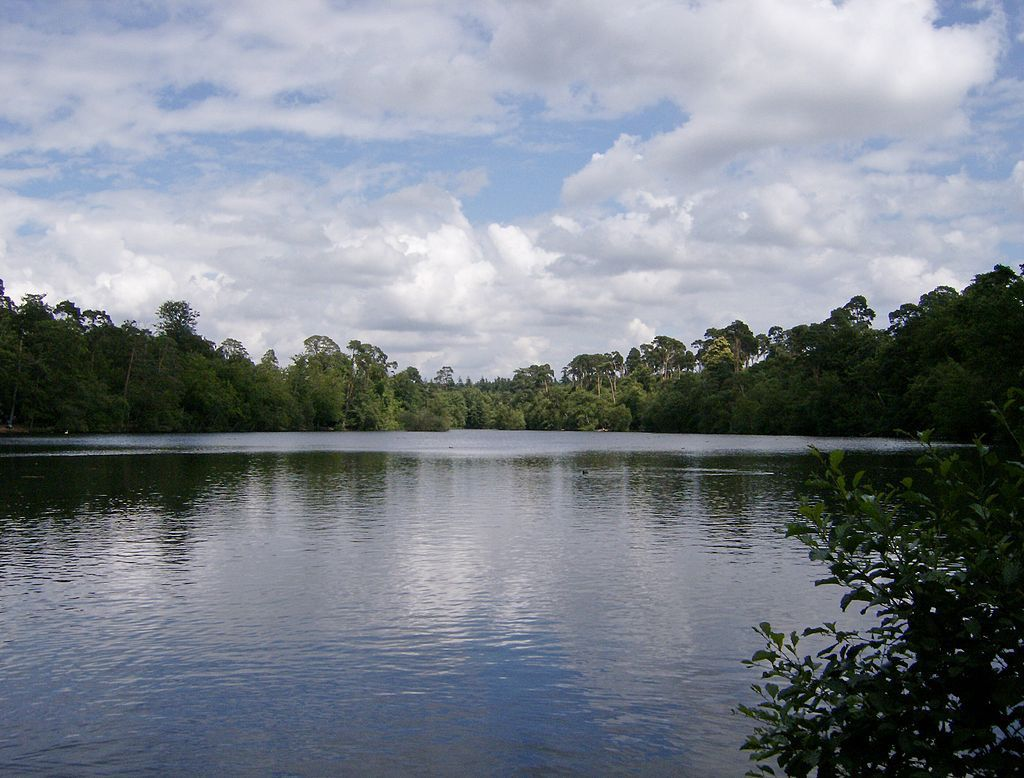 Blackpark_Lake