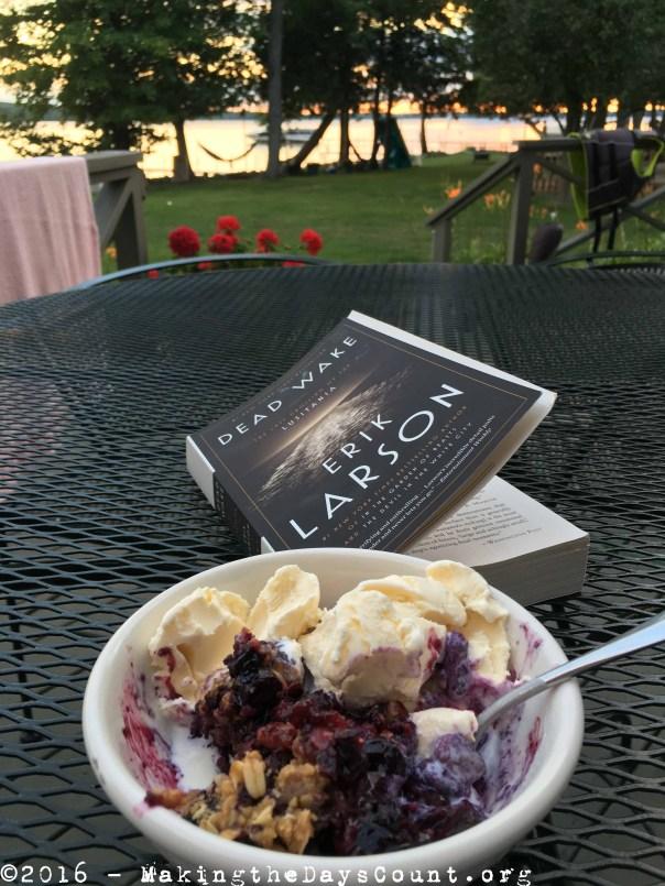 blueberry crisp, a book, and summer
