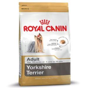 royal-canin-yorkshire