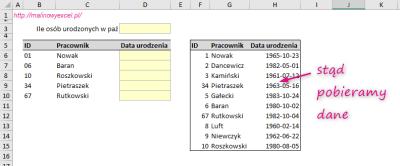 WYSZUKAJ.PIONOWO | Malinowy Excel