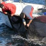 Los turistas podrán acompañar a los pescadores durante su jornada de trabajo