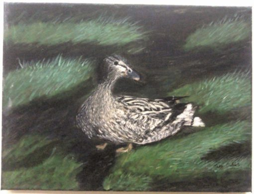 """Mary Collins. """"Wandering Duck"""". Acrylic on Canvas."""