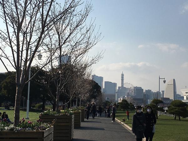 山下公園の桜コンテナ