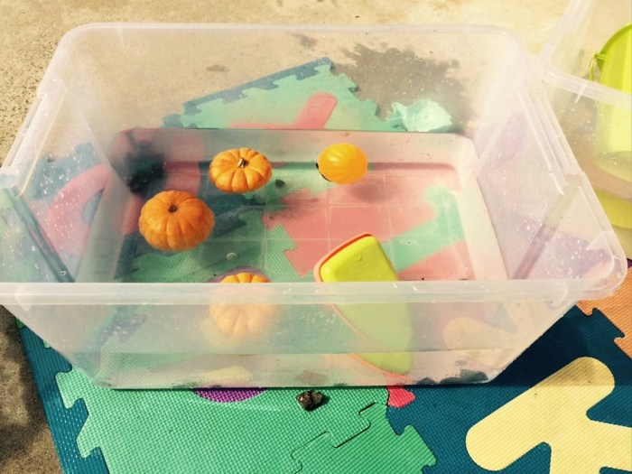 Pumpkin Water Play