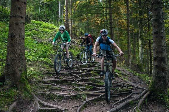 Mountainbiking in Tirol mit Tourguide: an expat experience