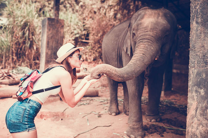 girl playing with elephant in chiang mai
