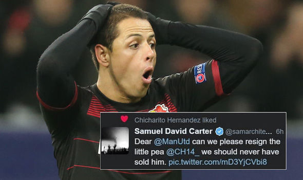Javier Hernandez Manchester United Transfer 782716