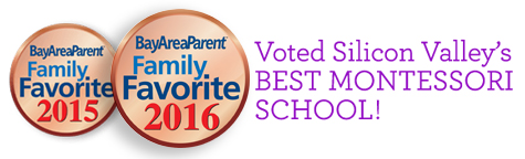 Mandala voted Best Montessori School