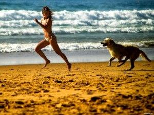 собака и бег